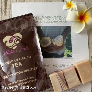 【講座募集】Hawaiian  Organic Cacao Soapレッスンのご案内