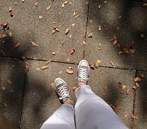 リハビリ散歩