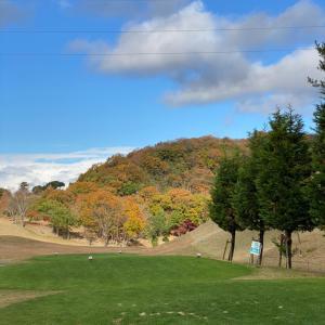 【ゴルフラウンド】ショットの調子は良くないけど…@ロータリーゴルフ倶楽部①