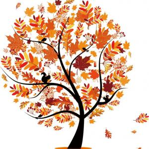 10月のご予約承ります。秋晴れを有効活用しませんか?