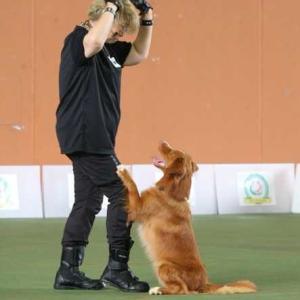 犬と贅沢な時間