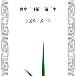 ルーンメッセージ2118