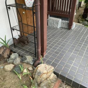 田原本町 M様邸 玄関ポーチタイルやり替え工事