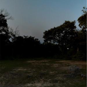kamiちゃんの旅日記 建勲神社(船岡山)編