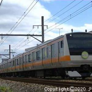 E233系「東京アドベンチャーラインで遊ぼう」ヘッドマーク付 福生~羽村②  [マフィアの日]
