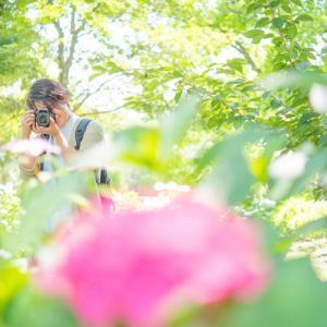 募集開始❤︎オート卒業!ママのための初心者カメラレッスン:サマーオンライン講座(3DAYS)