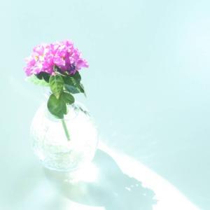 8/3 午前 zoom 起業ママのリアルトーク会
