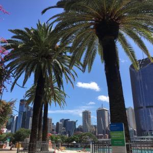 オーストラリア・留学生の仕事が徐々に増えてきた