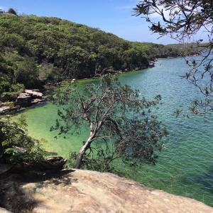 オーストラリアでアウトドアアクティビティガイドを学ぶ