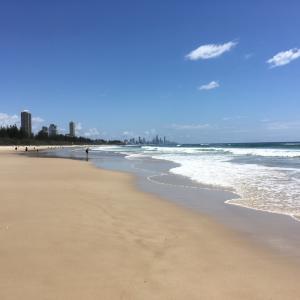 オーストラリア留学を希望している人の今