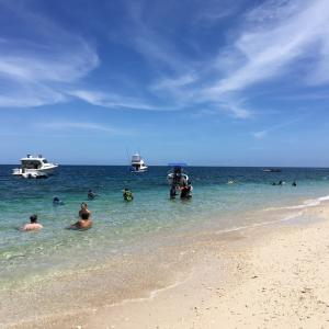 オーストラリア:一生に一度は訪れてほしい場所2‐フィッツロイ島