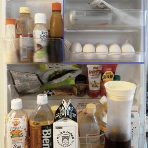 冷蔵庫の扉収納 小物類
