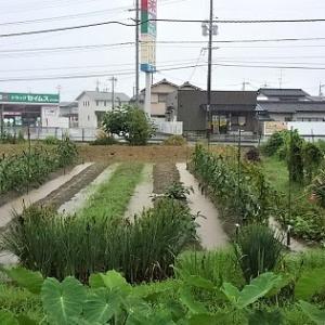 http://teru2nd.blogspot.com/2020/07/diy.html