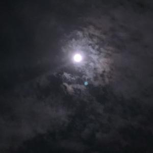 今宵は満月