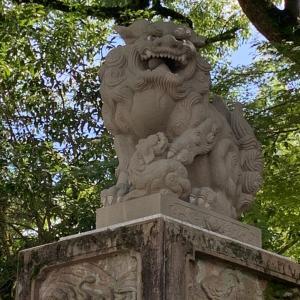 ぶらり京都⑥ 「八坂神社へ」