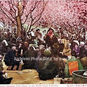 100年余前の絵葉書で楽しむ福岡市・西公園のサクラお花見風景