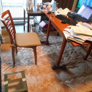 床に絨毯敷きました