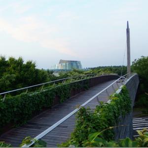自然を感じる鹿児島の気軽な散策スポット5選【県内各地編】