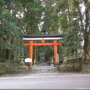 神社詣りに行く意味、初詣から始める「祈り」。