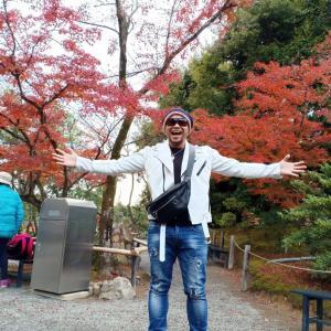 日本旅!東京