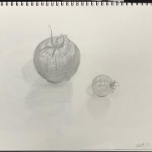 デッサン73「トマトと薔薇」  #ローズマリー #洗濯バサミにぶら下がる蝶