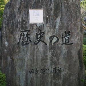 関宿 地蔵院・瑞光寺と廃屋?