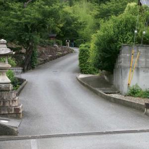 天寧寺と五百羅漢