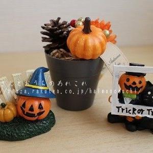 Halloween と 10月の玄関♪