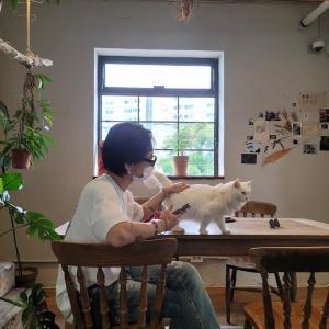 イェソンSNS☆猫との楽しい時間 210915