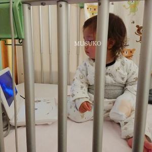 ◆ウリちゃんカテ入院 * 心臓カテーテル検査直前までの様子