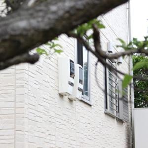 ◆電気メーターから鳥の鳴き声?スズメ家族が住んでいた!