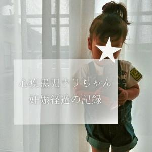 ◆《心疾患児》三男妊娠を振り返る。妊娠初期③