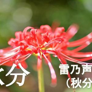 昨日、令和3年9月23日(木)は秋分でした。お彼岸の中日でしたから、四天王寺さんへ行っ...