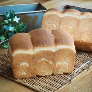 梅酵母の食パン