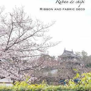 お花見&ぞーなっつ♡西尾歴史公園