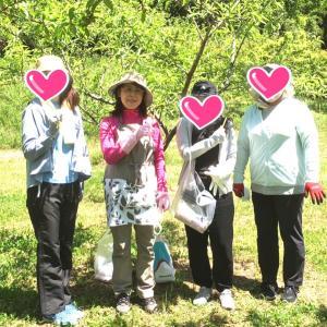 桃の摘果作業へ行ってきました