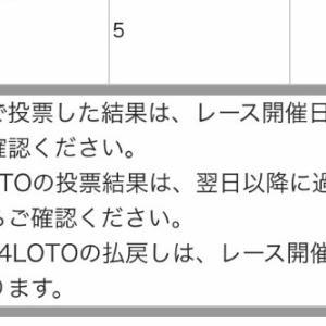 6/24大井競馬 特別情報!!帝王賞他