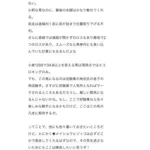 久々更新✨3/8大井競馬