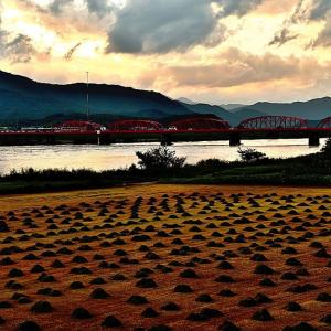四万十川赤鉄橋の夕暮れ