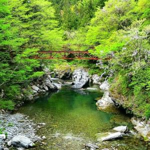 新緑の吉野川探訪④ 白髪神社辺り
