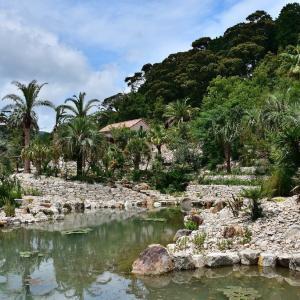 モネの庭「ボルディゲラの庭」