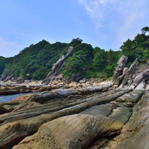 ジオパーク 竜串海岸をしっぽ娘とお散歩