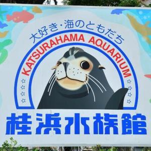 桂浜水族館へGO♫