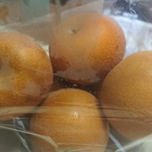 フルーツの秋と今日のエアロ