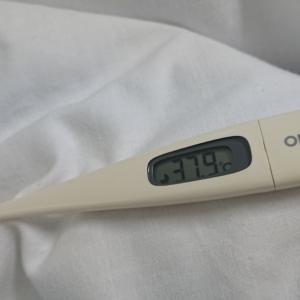 熱が出た~