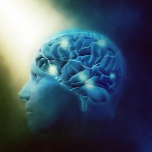 脳覚醒体験記 ストレス、心配、不安、恐怖の渦中に長期間いると脳は機能停止する