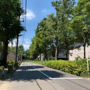 カーオーディオ東京|新車ステップワゴン フロア防音遮熱対策~激闘ウルトラマンタロウ!