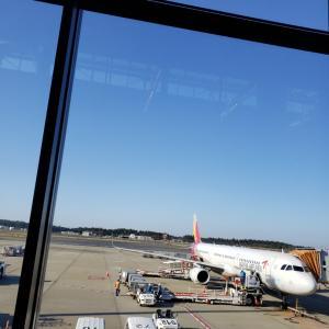ソウル到着!まずは南大門市場エリアから始まる18泊の旅♪