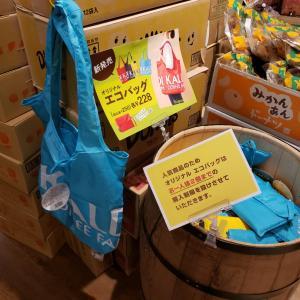 買えなかったカルディエコバッグ、捨てられないカルディ紙袋