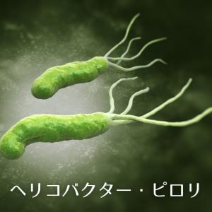 「ピロリ菌感染で悔やむ事」私のピロリ菌感染の原因と除菌の結果…!
